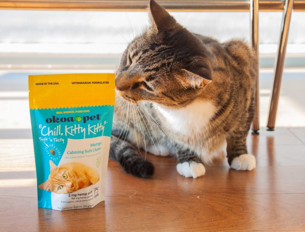 """Cat sniffing bag of Okoa Pet """"Chill, Kitty Kitty"""" Calming Treats for Cats Bag."""